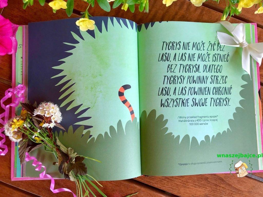 książka dla dzieci Oko w oko z tygrysem