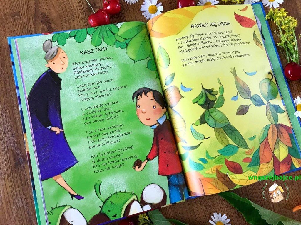 Seria Poeci Dzieciom 5 Tomów Wydawnictwo Ibis