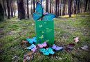 Ania z Zielonego Wzgórza – Wydawnictwo WILGA